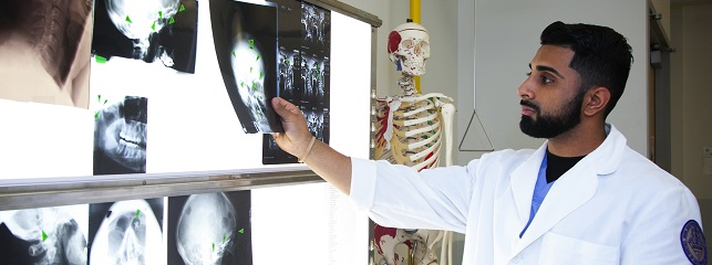 Medical student checks over x-rays in the Histology Lab
