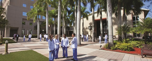 nova admissions essay The nova southeastern university college of optometry'äôs office of admissions utilizes a rolling admissions process which allows for efficient and timely.